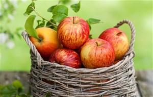 素食水果蘋果素材圖片