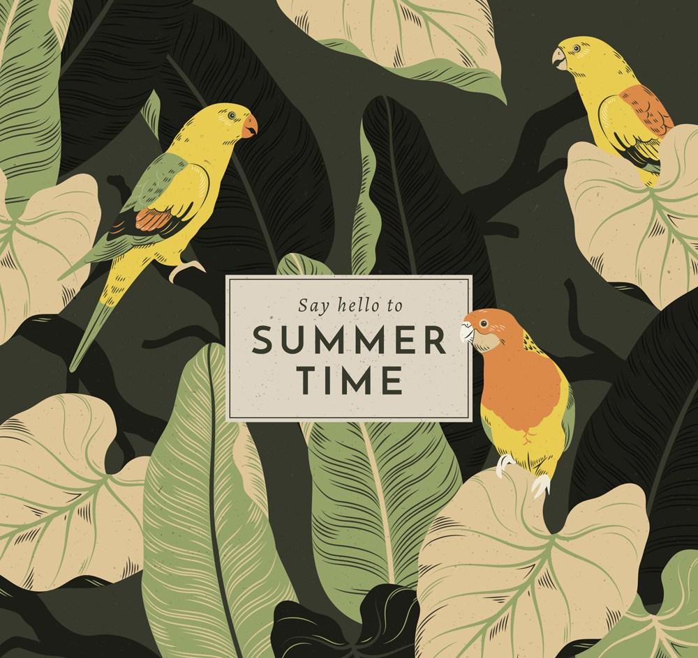 复古手绘夏季鹦鹉和叶子矢量素材