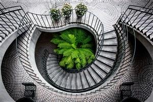 灰色中央绿植旋转楼梯