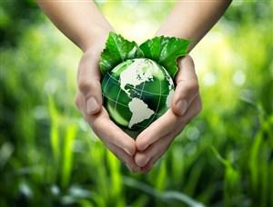双手捧着的绿色叶子和地球