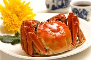 超大只腿有毛毛红红的大闸蟹美食图片