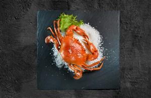冰沙冷冻海鲜新鲜超级美味大闸蟹图片