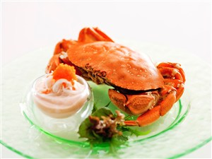 新鮮大閘蟹美食圖片