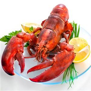 檸檬海鮮大龍蝦圖片