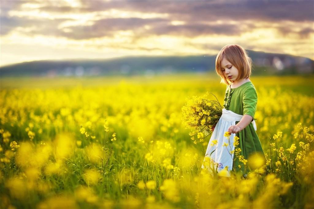 油菜花田里的小女孩圖片