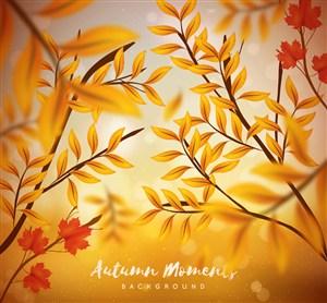 逼真秋季樹枝設計矢量素材