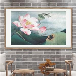 白里透紅蓮花和蜻蜓圖片