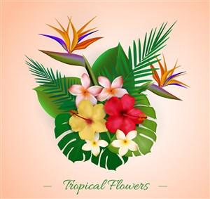 彩色热带植物花束矢量素材